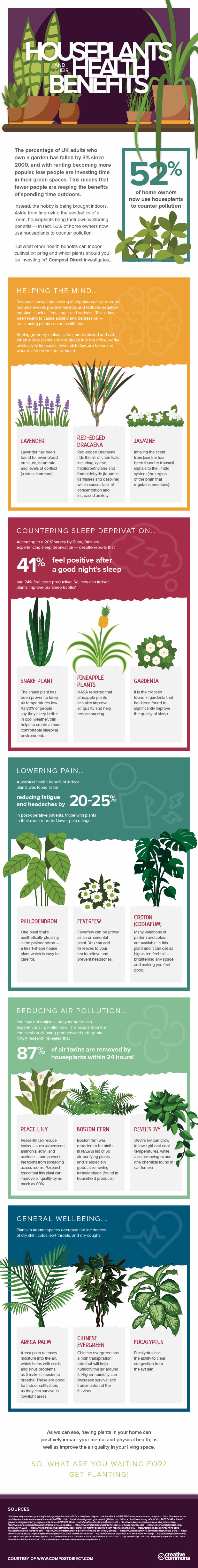 infographic - houseplants and their health benefits